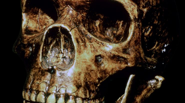 Scientists uncover evidence of ghost population of ancient humans in ancient Africa